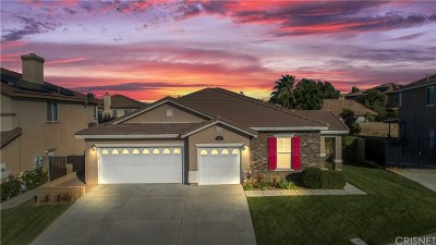Palmdale Single Family Home For Sale: 39934 Borica Court
