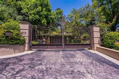 Encino Single Family Home For Sale: 4605 Petit Avenue