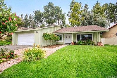 Thousand Oaks Single Family Home For Sale: 1889 Summer Cloud Drive
