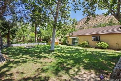 Acton Single Family Home For Sale: 33504 Listie Avenue