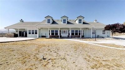 Acton Single Family Home For Sale: 33750 Desert Road
