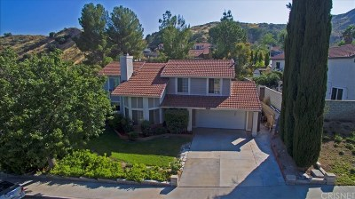 Santa Clarita, Canyon Country, Newhall, Saugus, Valencia, Castaic, Stevenson Ranch, Val Verde Single Family Home For Sale: 29513 Poppy Meadow Street