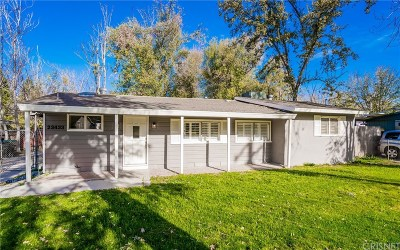 Santa Clarita, Canyon Country, Newhall, Saugus, Valencia, Castaic, Stevenson Ranch, Val Verde Single Family Home For Sale: 23433 8th Street