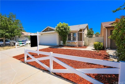 Palmdale Single Family Home For Sale: 2648 East Avenue S South