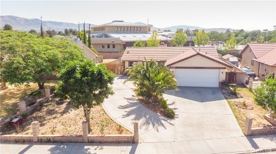 Palmdale Single Family Home For Sale: 37747 Maureen Street