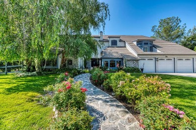 Los Angeles County Single Family Home For Sale: 15580 Iron Canyon Road