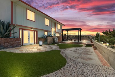 Palmdale Single Family Home For Sale: 4625 Mount Emma Road