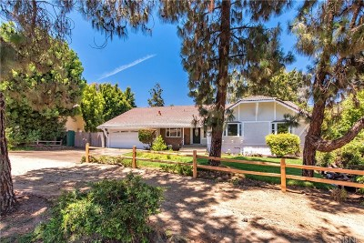 Simi Valley Single Family Home For Sale: 1379 Nonchalant Drive