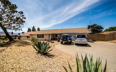 Los Angeles County Single Family Home For Sale: 4566 Palmdale Hills Drive