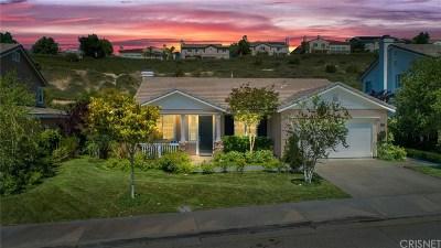 Valencia Single Family Home For Sale: 29211 Via Solano