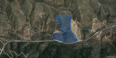 Palmdale Residential Lots & Land For Sale: Bouquet Cyn Vic 95 Stw