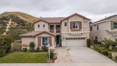 Saugus Single Family Home For Sale: 28738 Garnet Canyon Drive