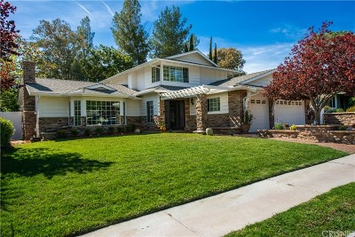 Agoura Hills Single Family Home For Sale: 4029 Patrick Henry Place