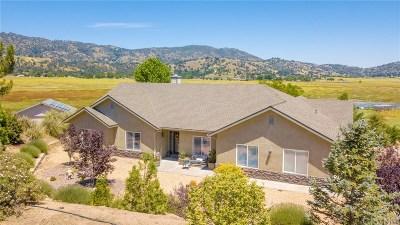 Tehachapi Single Family Home For Sale: 23640 Dart Drive