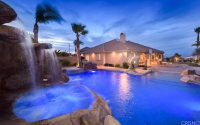 Palmdale Single Family Home For Sale: 41524 Kinda Drive