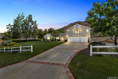 Acton Single Family Home For Sale: 32220 Camino Canyon Road