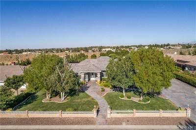 Lancaster Single Family Home For Sale: 42144 Desert Sage Avenue