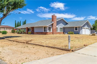 Palmdale Single Family Home For Sale: 807 Denise Avenue