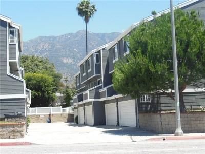 Pasadena Condo/Townhouse For Sale: 1935 East Washington Boulevard #2