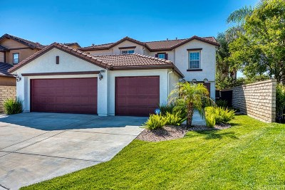 Castaic Single Family Home For Sale: 29956 Granger Place