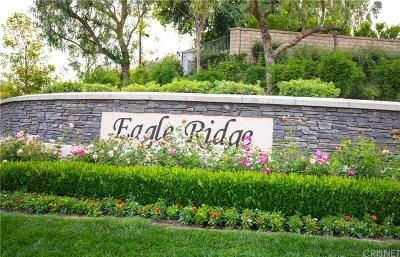 Thousand Oaks Single Family Home For Sale: 3074 Blazing Star Drive