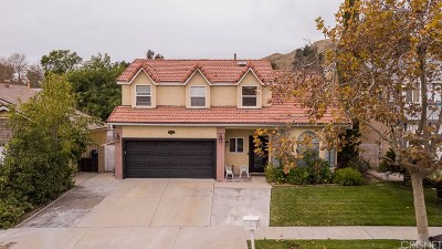Sylmar Single Family Home For Sale: 11341 Goleta Street