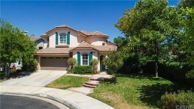 Saugus Single Family Home For Sale: 28852 Cedar Ridge Court