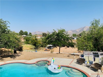 Acton Single Family Home For Sale: 32986 Old Miner Road