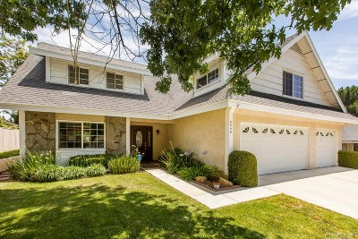 Calabasas Single Family Home For Sale: 5048 Dantes View Drive