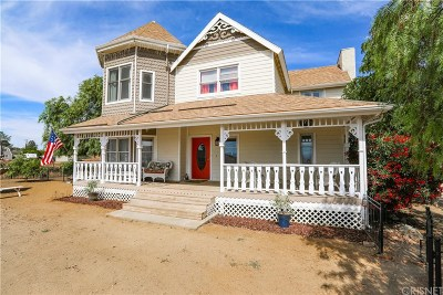 Acton Single Family Home For Sale: 34629 Juniper Valley Road