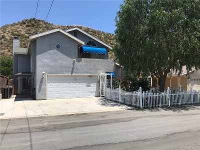 Castaic Single Family Home For Sale: 28646 Lincoln Avenue