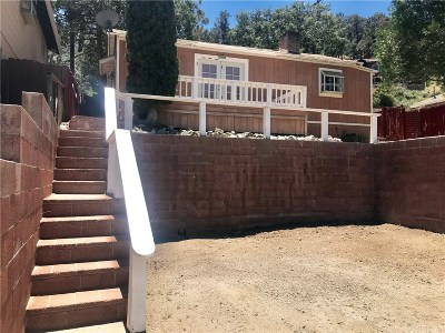 Frazier Park Single Family Home For Sale: 3900 Park Drive