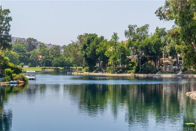 Calabasas Condo/Townhouse For Sale: 4601 Park Adelfa