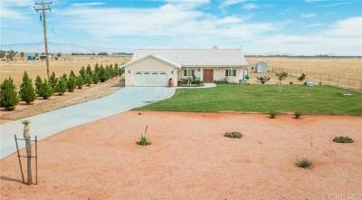 Lancaster Single Family Home For Sale: 8241 West Avenue I