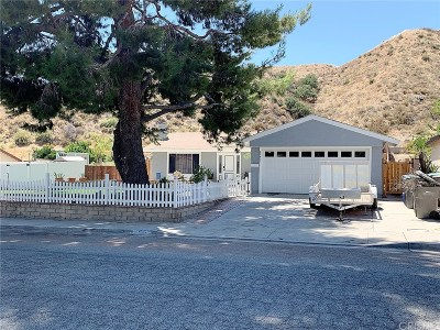 Canyon Country Single Family Home For Sale: 29401 Abelia Road