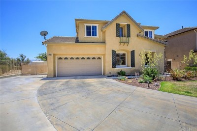 Saugus Single Family Home For Sale: 22006 Lytle Court