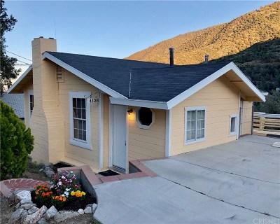 Frazier Park Single Family Home For Sale: 4128 Elliot Trail