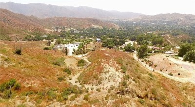 Canyon Country Residential Lots & Land For Sale: Vac Iron Canyon