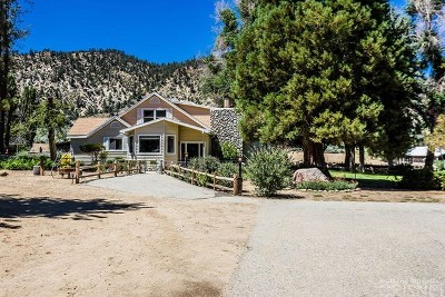 Frazier Park Single Family Home For Sale: 12471 Boy Scout Camp Road