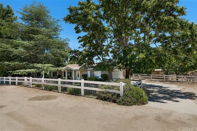 Acton Single Family Home For Sale: 31720 2nd Street