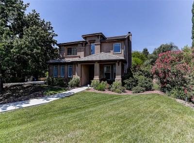 Canyon Country Single Family Home For Sale: 19001 Saddleback Ridge Road