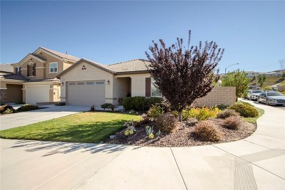 Saugus Single Family Home For Sale: 19607 Lanfranca Drive