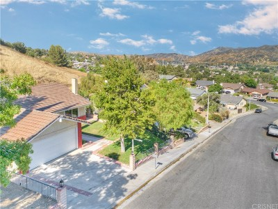 Canyon Country Single Family Home For Sale: 17137 Miss Grace Drive