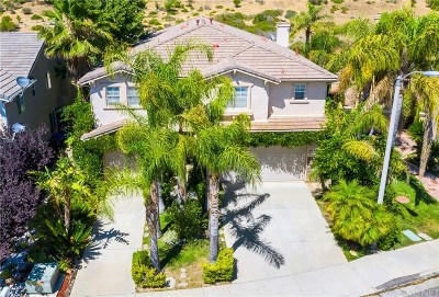 Castaic Single Family Home For Sale: 27811 Pine Crest Place