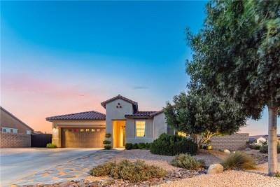 Lancaster Single Family Home For Sale: 4313 West Avenue M10