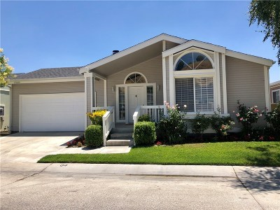 Canyon Country Single Family Home For Sale: 19884 Canyon View Drive