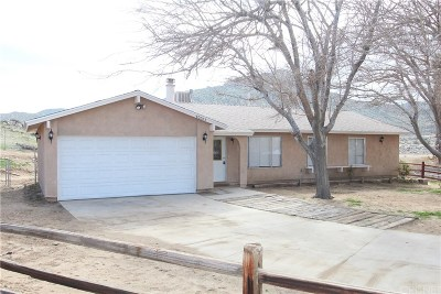 Palmdale Single Family Home For Sale: 40003 167th Street East