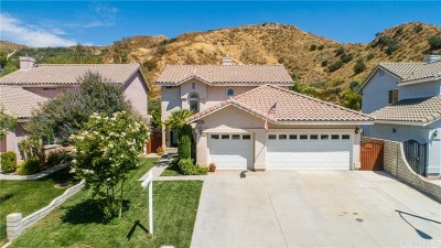 Canyon Country Single Family Home For Sale: 29622 Parkglen Place