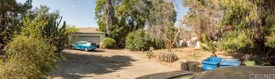 Panorama City Single Family Home For Sale: 14829 Rayen Street
