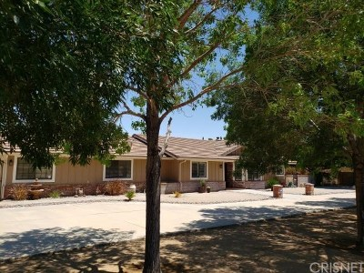 Palmdale Single Family Home For Sale: 1609 West Avenue N12